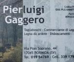 gaggero